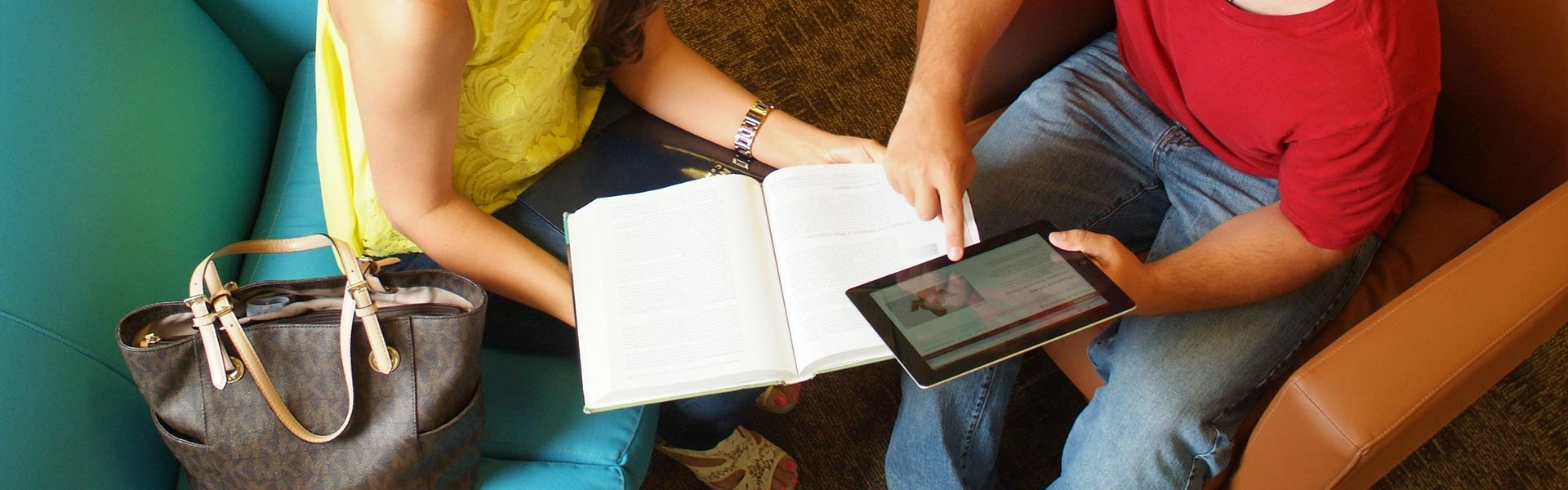 Student Loan, Student Portal